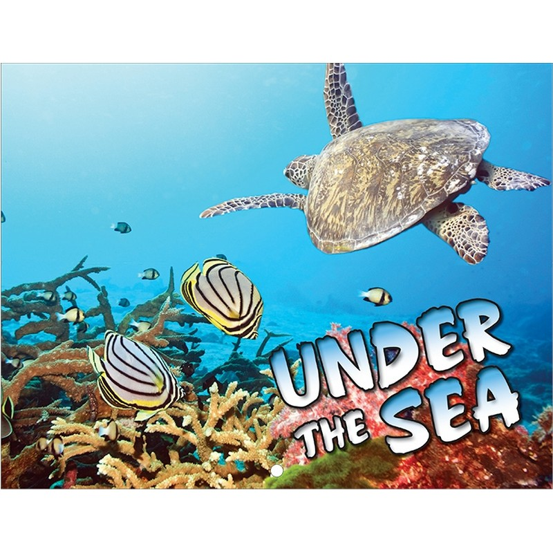 Under The Sea Life Wall Calendar
