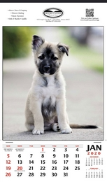 German Shepherd Puppy, Single Image  Promo Calendar, 12x20.5