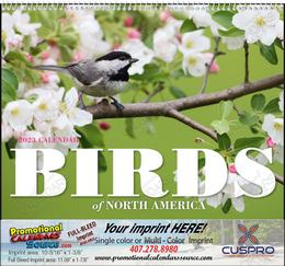 Birds of North America Calendar, 2019, Spiral