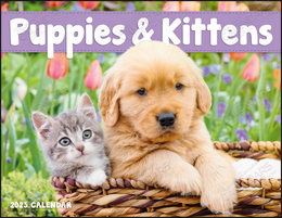 Puppies & Kittens Window Calendar With Cut-Out Print Area, Size 11x17