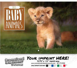 Baby Animals Wall Calendar Stitched