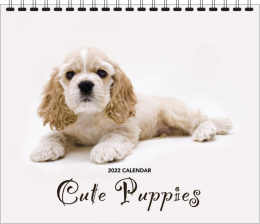 Cute Puppies Wall Calendar, 12.25x22, Spiral