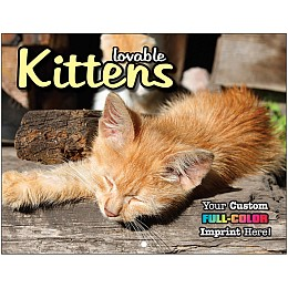Kittens Promotional Mini Calendar