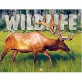 Wildlife Promotional Mini Calendar