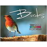Birds Promotional Mini Custom Calendar