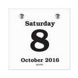 Daily Date Calendar Refill 33